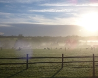 Shepherds-huts-19_800